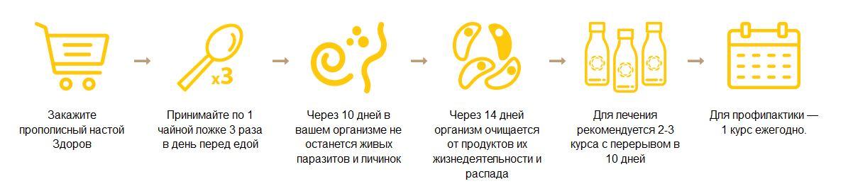 Эликсир от паразитов - ДЕПАРАЗИТ