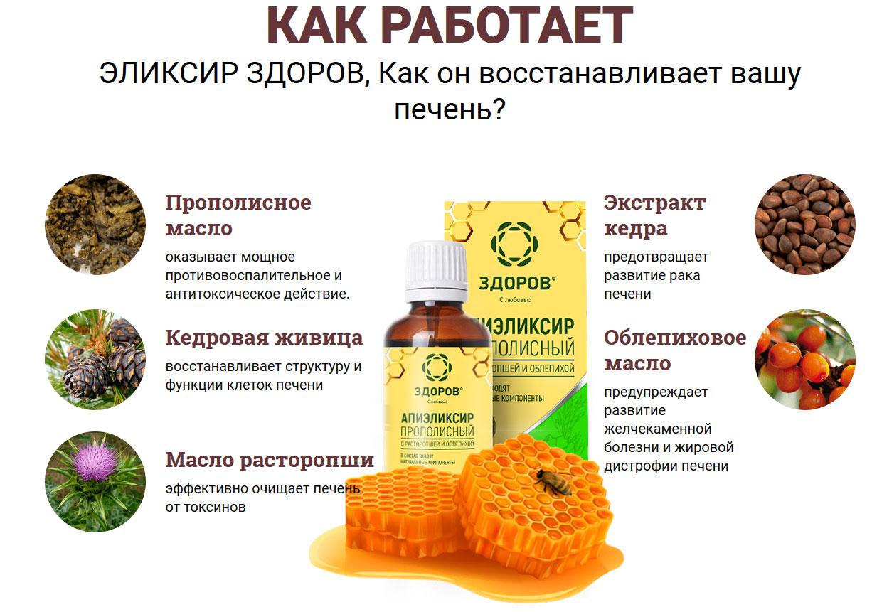 Состав эликсира ЗДОРОВ для печени